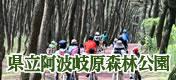 阿波岐原森林公園