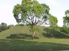 大山祇陵(おおやまつみりょう)