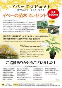 H29.11 市民の森 イペープロジェクト苗木無料配