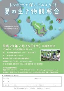 H28.7 夏の生き物観察会2-