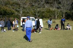 犬のマナー教室5
