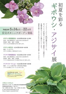 H28.5 初夏を彩るギボウシ・アジサイ展out