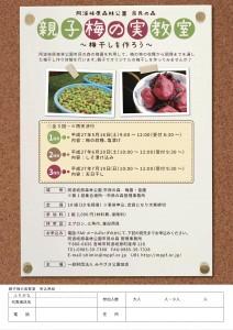 H27.5 親子梅の実教室 チラシ