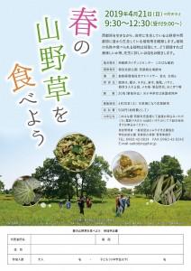 H31.4 春の山野草を食べようA4チラシ