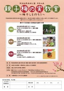 2019.5~6 親子梅の実教室 チラシout