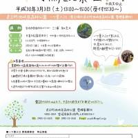 H30.3 一ツ葉入江 野鳥観察会チラシout