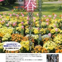 H31.3 植物園春のフラワーショーout