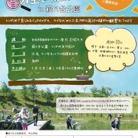 H30.4 春の生き物観察会 チラシout