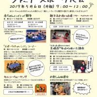 2019.5 ファミリースポーツ大会チラシカラーout