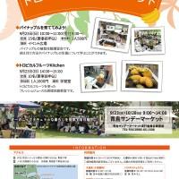 H30.9 トロピカルイベント+INFOout