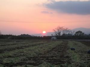 西都原の夕焼け (3)