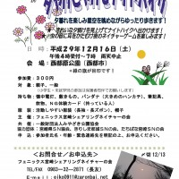 H29年度夜のNG西都原公園A5版(日日変更)-001